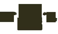 logo_liveshow2